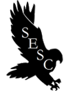 Sesc - Mobile App Development Dubai